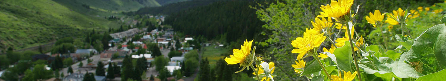 Minturn CO Vacation Rentals
